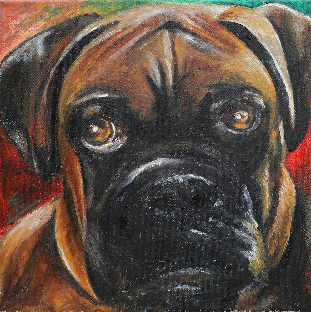 Hero the Boxer Puppy painting, Pet Portraits - Artistic View