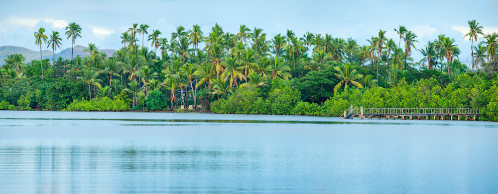 Fiji Palms Panoramic print by Brad Scott