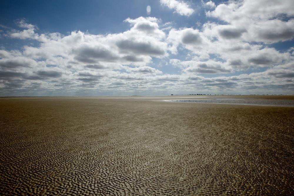 low tide walk 2 beach art print
