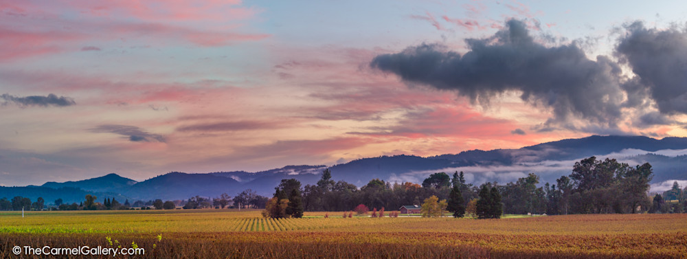 Sunset Panorama, Napa Valley Art | The Carmel Gallery