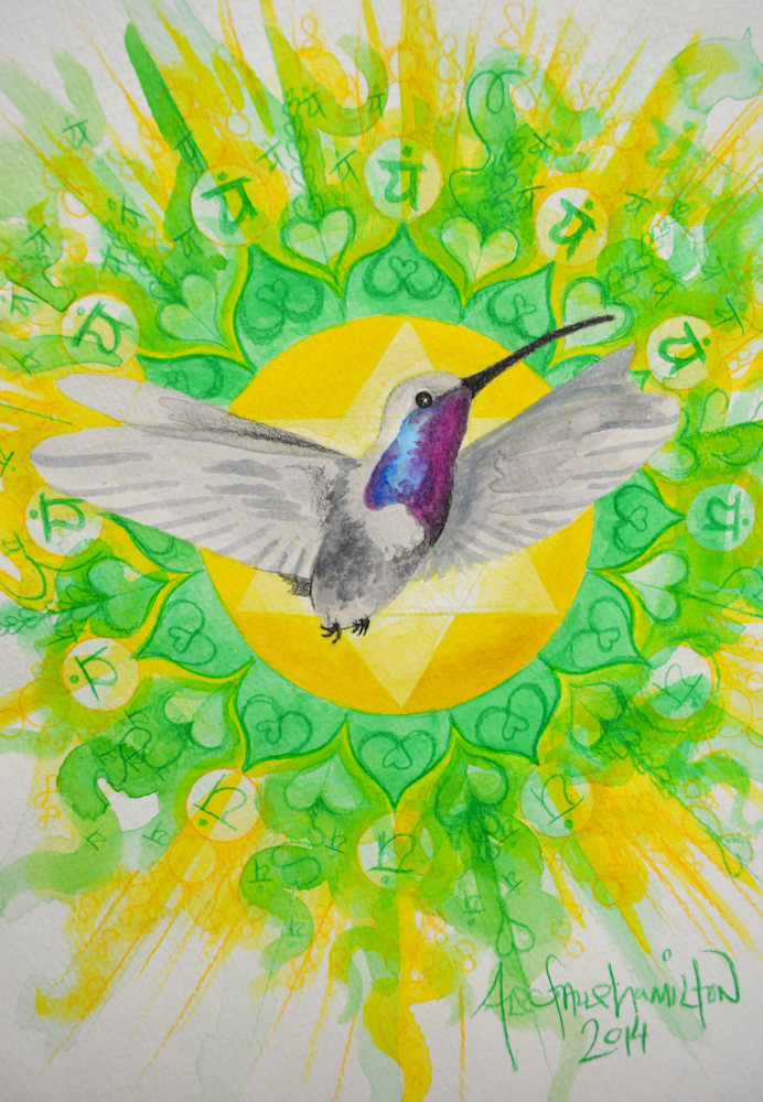 Hummingbird Art painting by Alec Falle Hamilton