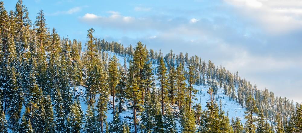 The Face of Heavenly, Heavenly Ski Resort Lake Tahoe Photo Print