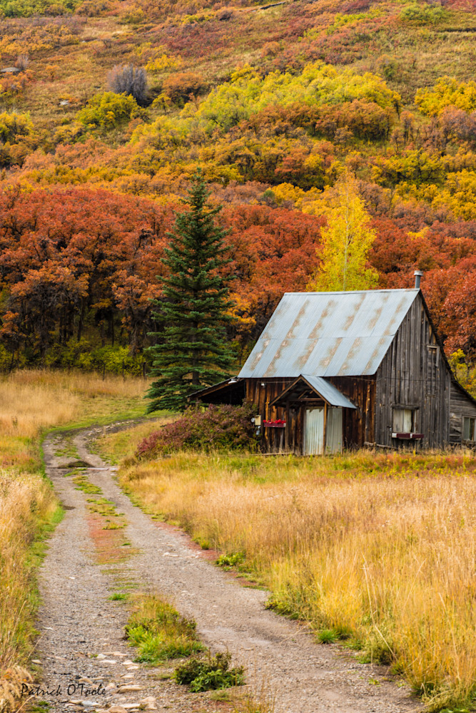 Cabin in the Woods Photograph for Sale as Fine Art