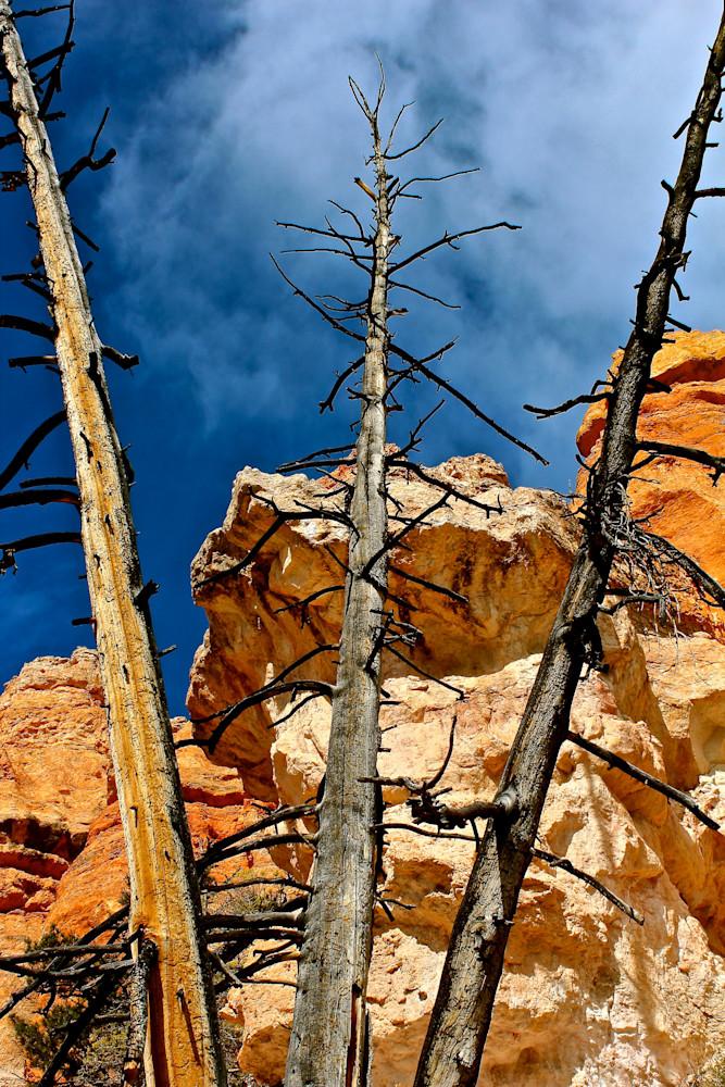 The Three Sentinels-BSouth, Bryce-Canyon, Utah, redrocks, sky, earth
