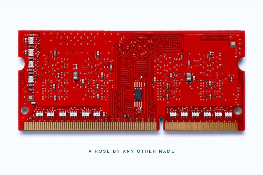 MacMini Memory Module A Rose Daniel Sussman