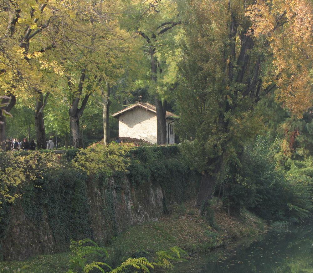 Now A Newly Added Image Autumn Sunlight Photography Art | Photoissimo - Fine Art Photography