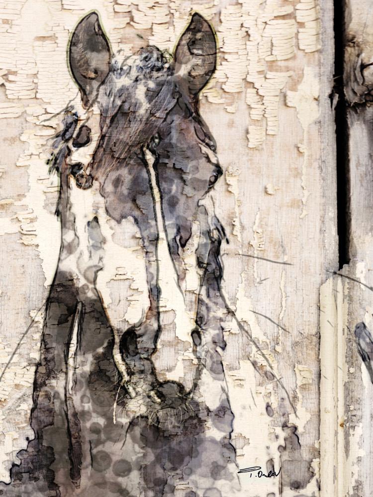 Ranger Horse, Equestrian Rustic Wall Art, Textured Decorative Horse Art, Farm House Wall Decor. Great Selection of Irena Orlov Horses Artworks.