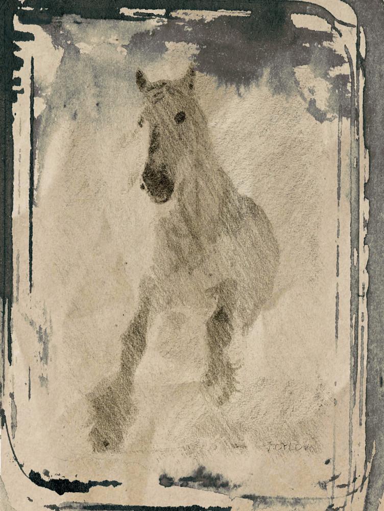 Orl 1781 White Horse Art | Irena Orlov Art