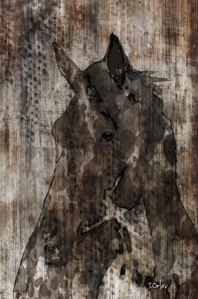 ORL-3131 Black Horse