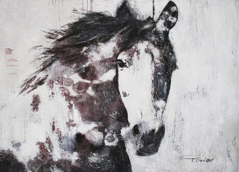 Orl 6144 15 Gorgeous Horse Art | Irena Orlov Art
