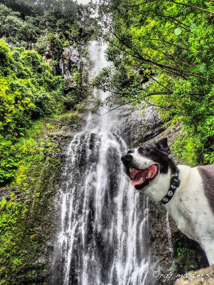 Wailua Falls for Sevin