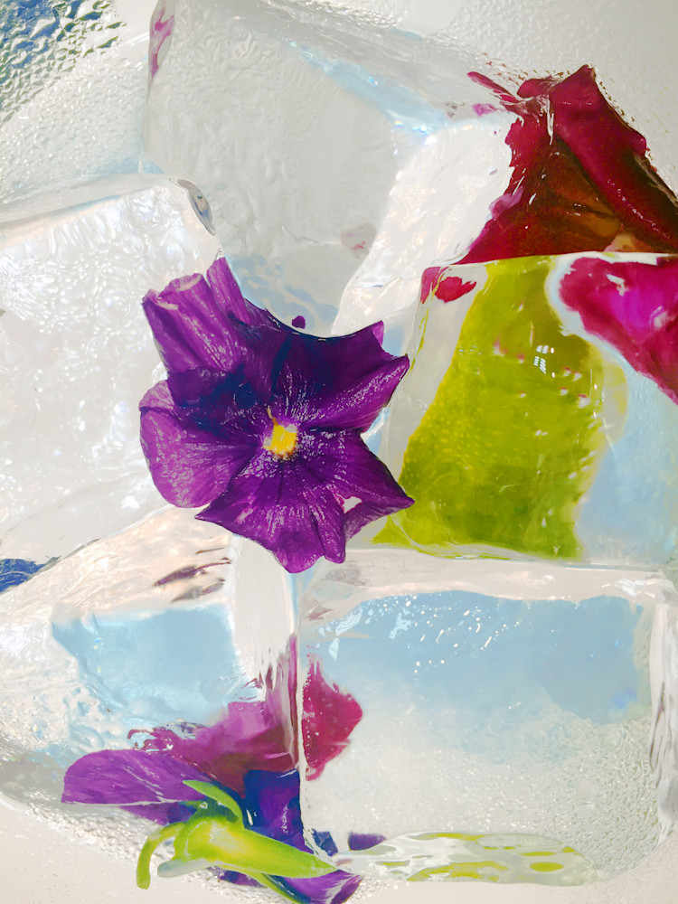 Iced Beauty 6 Art | Irena Orlov Art