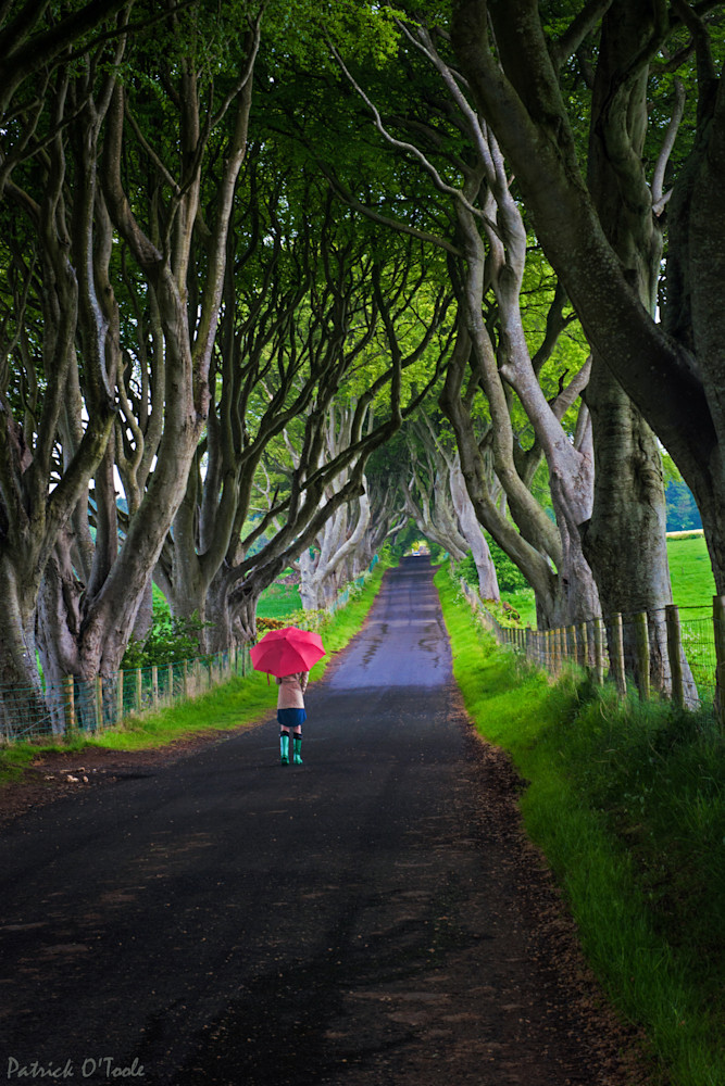 Patrick O'Toole fine art photographs capture a spirit of Ireland and Northern Ireland that will have you planning your next trip.  Browse images of Ireland, the Ring of Kerry, Cork and Northern Ireland.