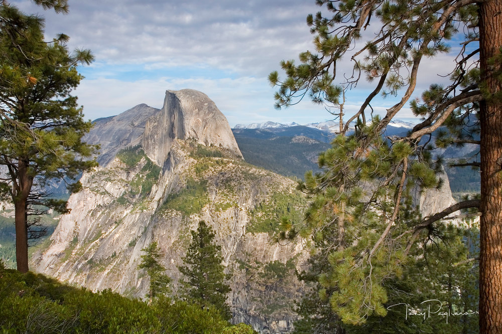 Half Dome Photograph for sale as fine art by Tony Pagliaro