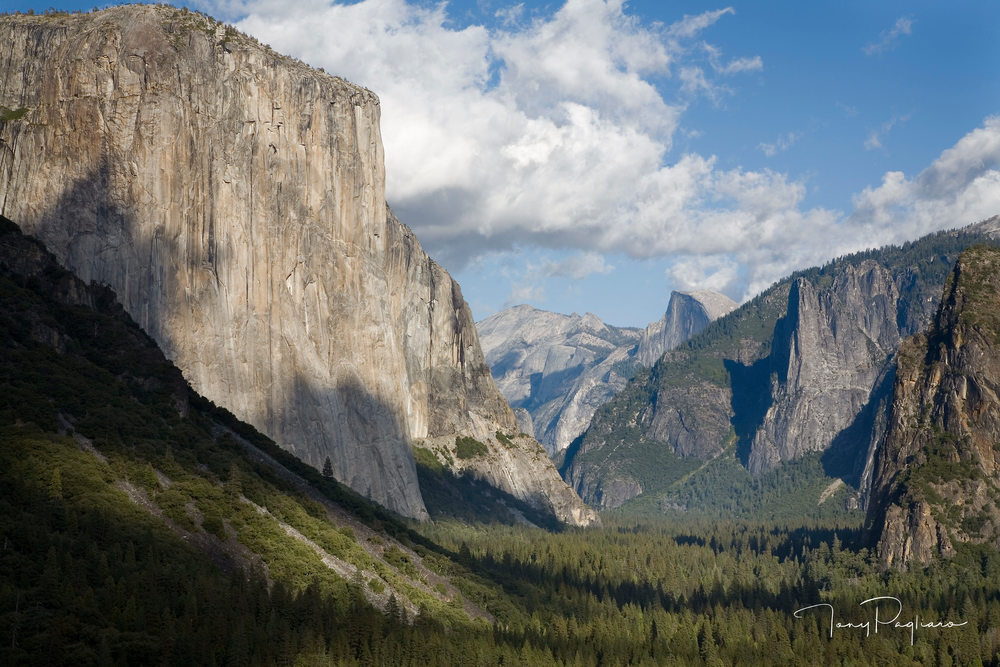 Tunnel View Art | Tony Pagliaro Gallery