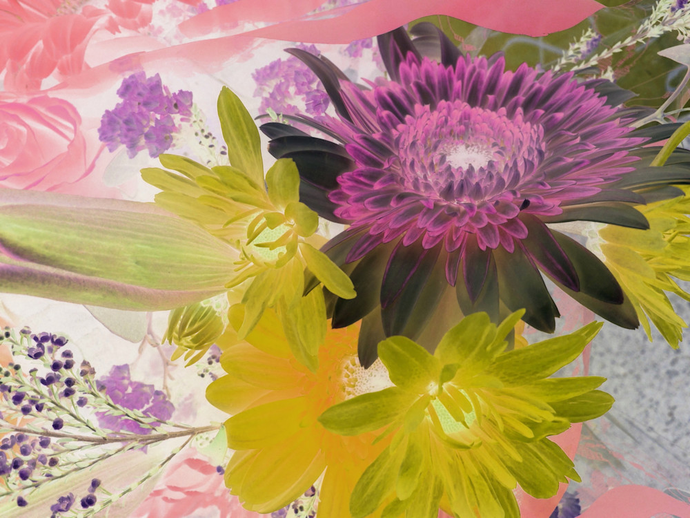 X-Ray Flowers 15