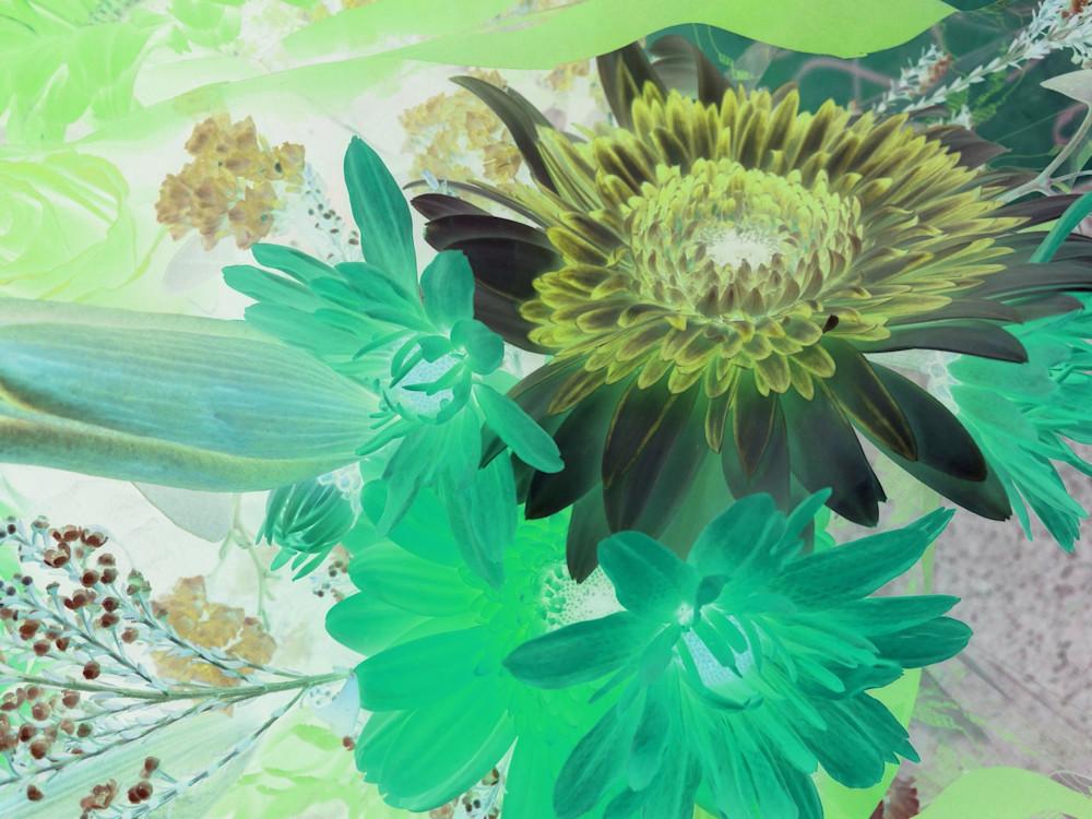 X Ray Flowers 16 Art | Irena Orlov Art