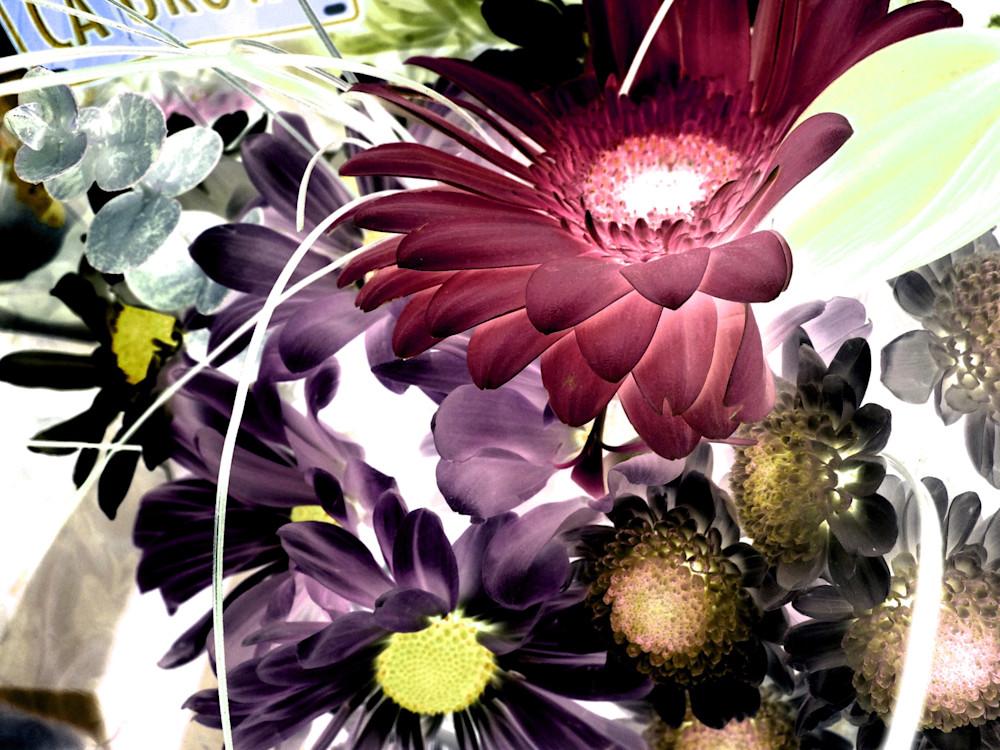 X Ray Flowers 2 Art | Irena Orlov Art
