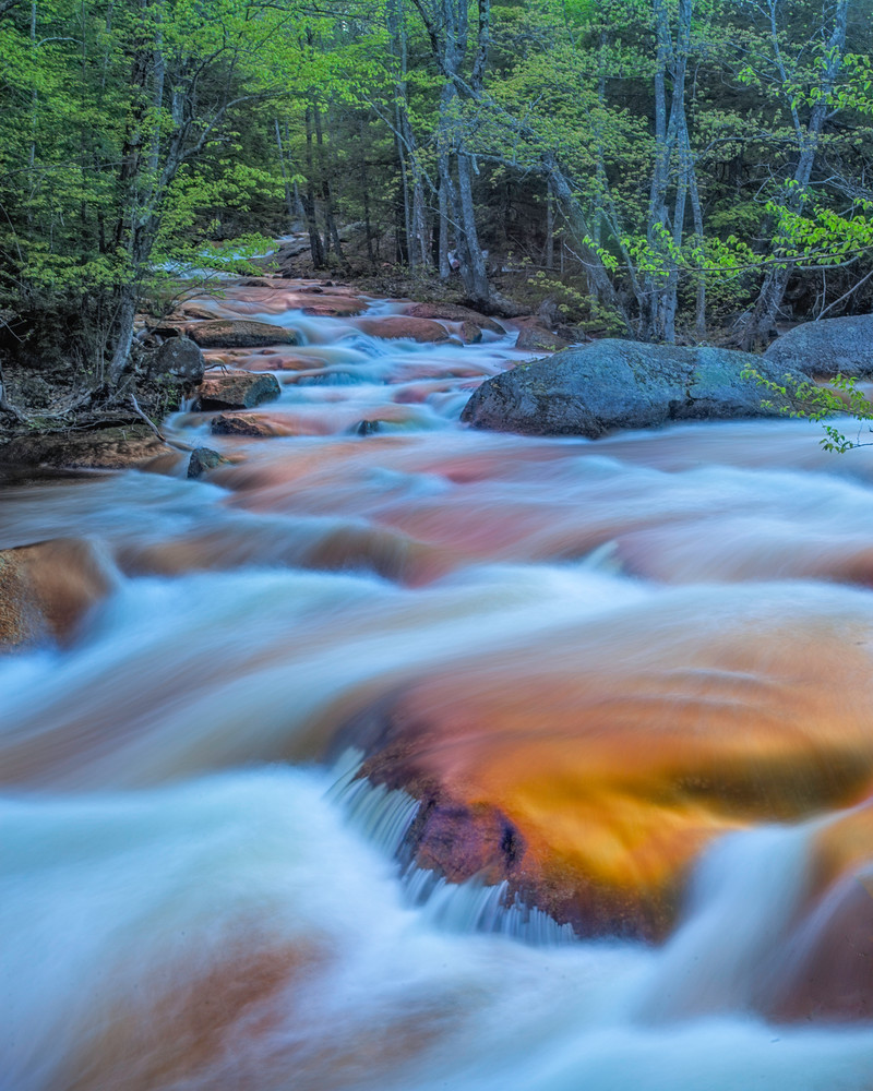 Rushing waters of the North Branch River