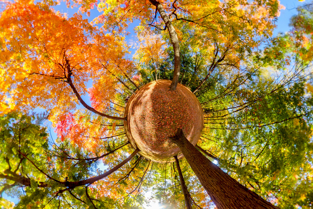 Fall Colors at Fitzgerald