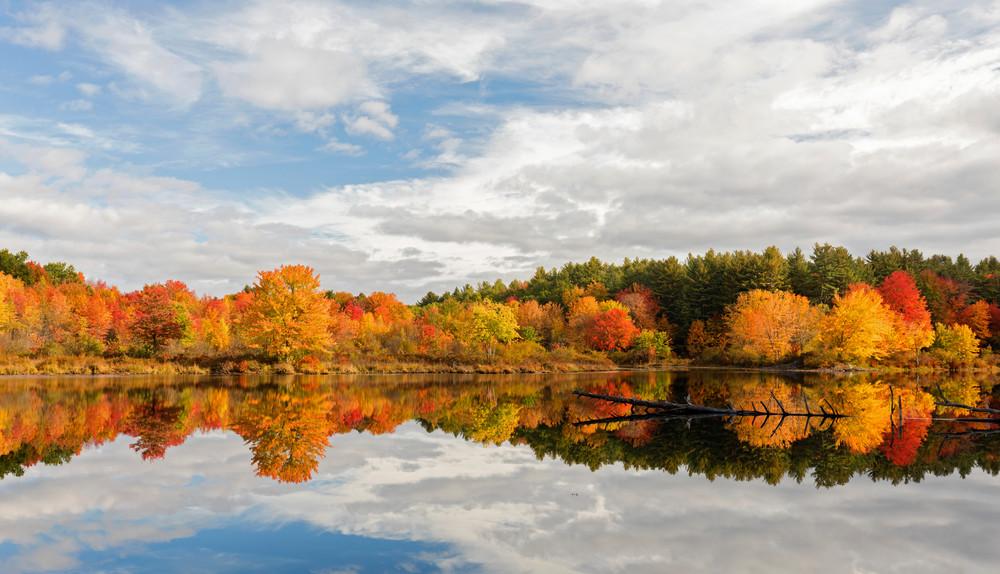 Bright blue skies autumn color at Stumpfield Marsh