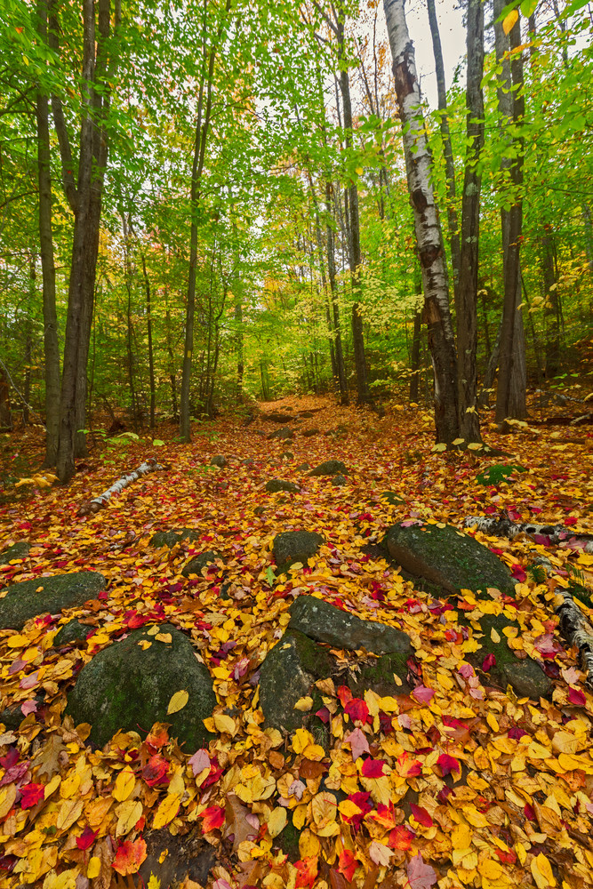 Fall on Hedgehog Mountain, Deering, New Hampshire