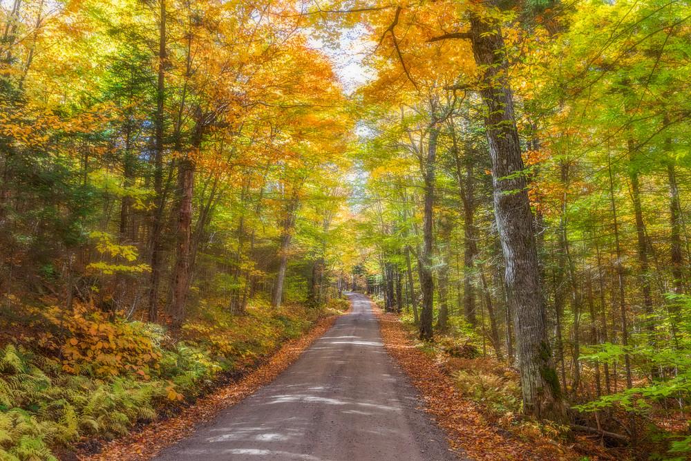 A beautiful dirt road in Henniiker, NH