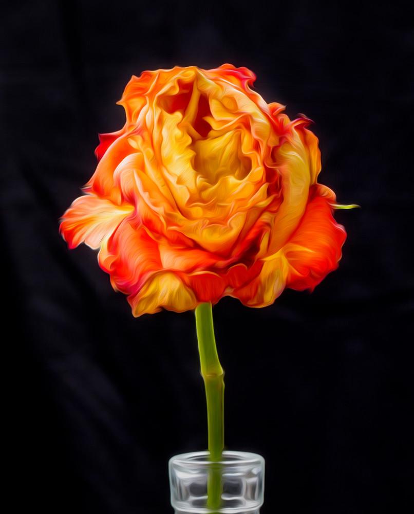Rose - painted technique