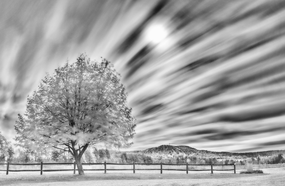 Long exposure tree and clouds Infrared