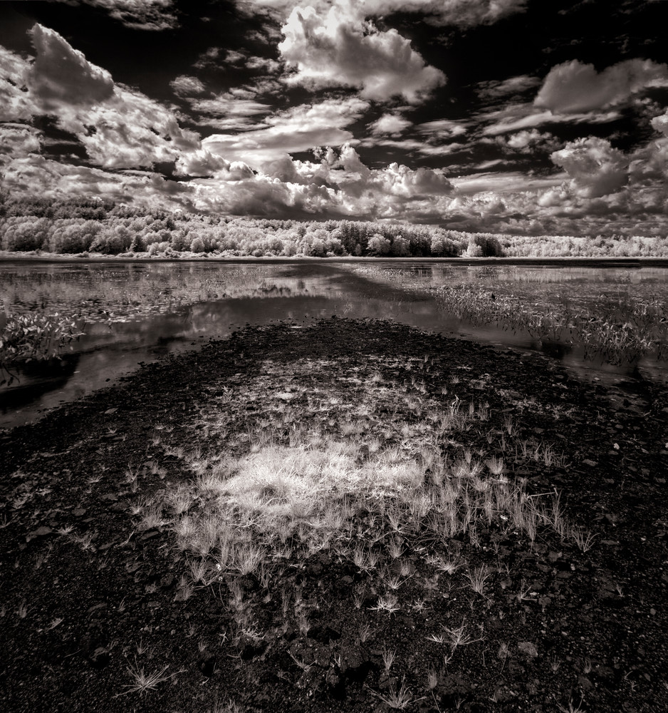 Infrared Pleasant Pond in Summer