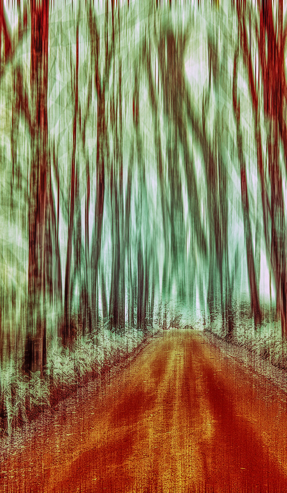 IR pan blur featuring a country road and many trees
