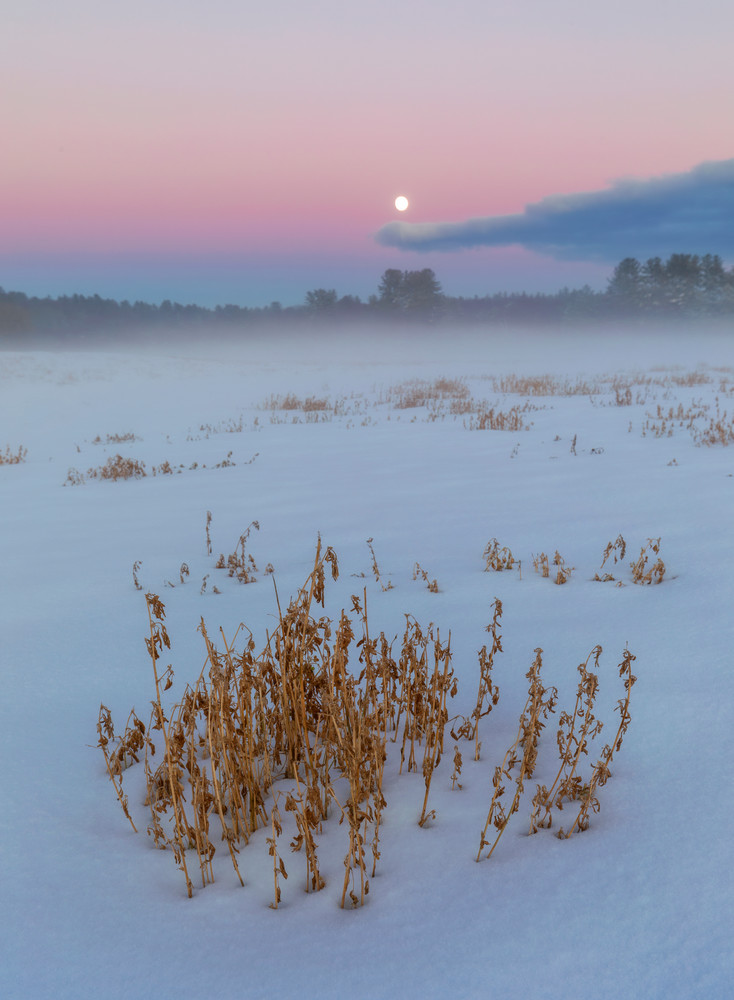 Snowy moonrise and winter field