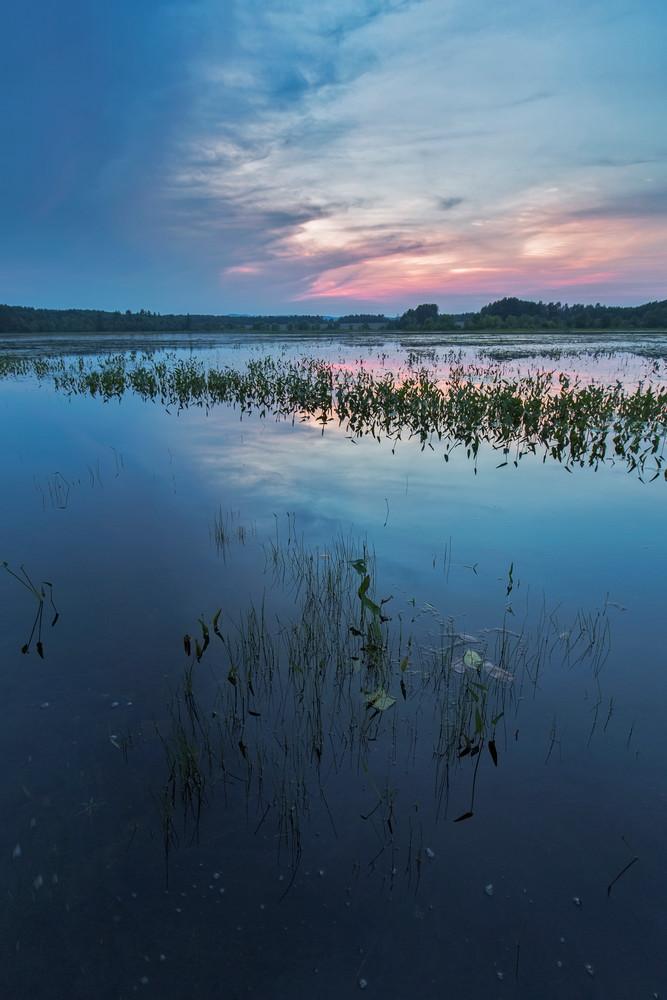 Summer Sunset at Stumpfield Marsh