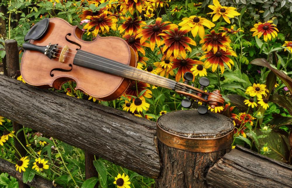 Music in the Garden, original violin artwork by Instrumental Art