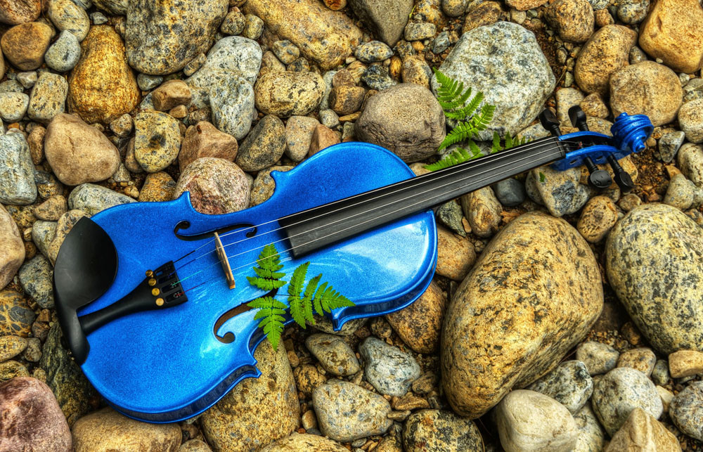 The Blue Violin Photography Art | Instrumental Art