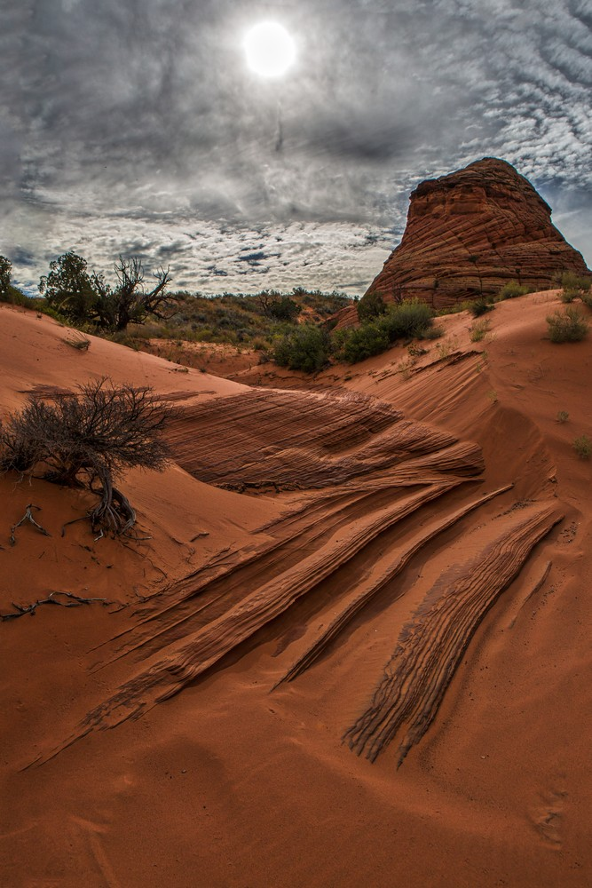 Red Coyote Butte | Douglas Sandquist Fine Art Photographs