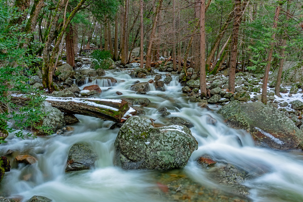 Rushing Bridalveil Creek
