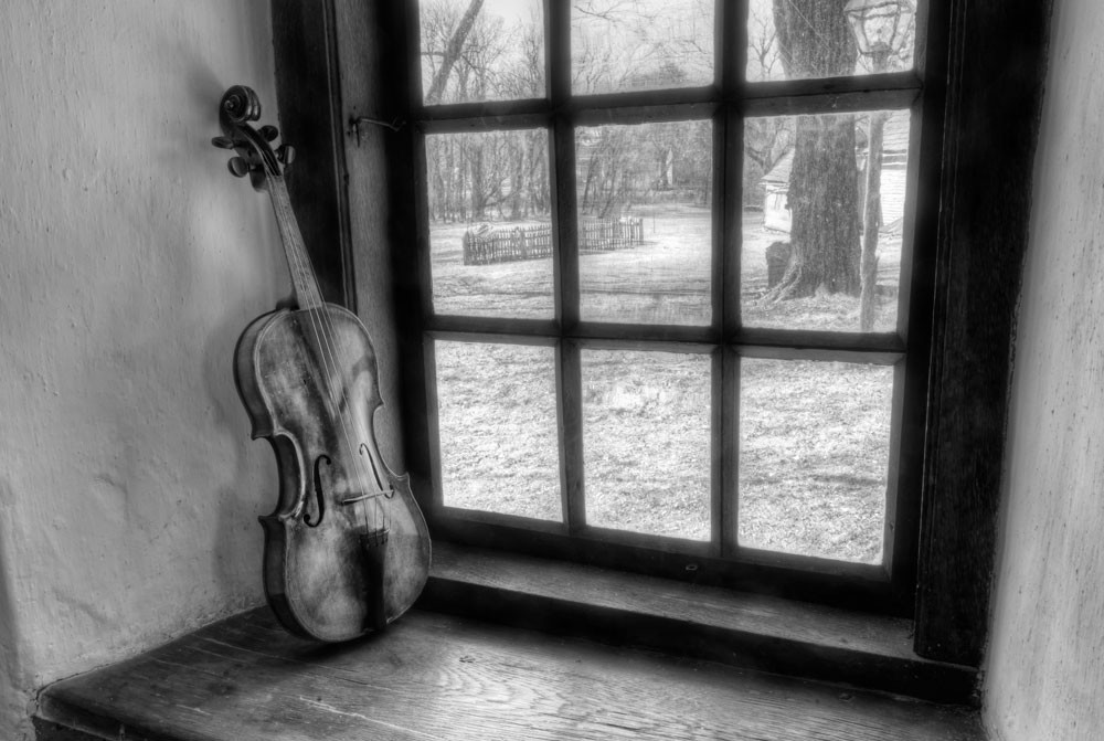 Violin Still Life Photography Art | Instrumental Art