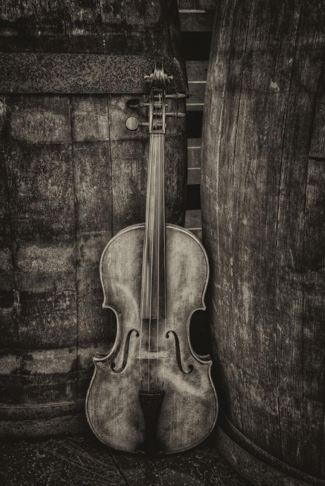 Violin Still Life Iii Photography Art | Instrumental Art
