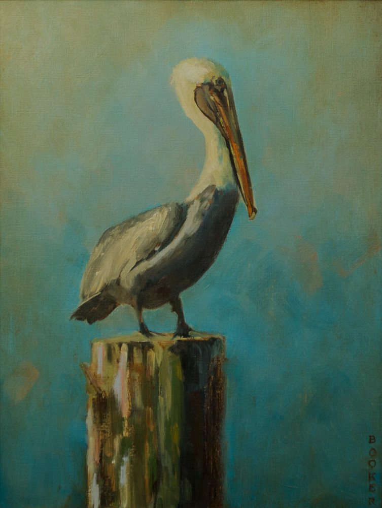 Pelican, Booker Tueller, seaside, art paintings