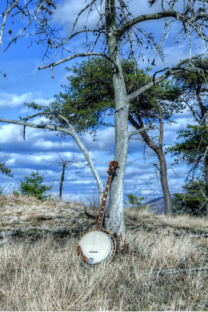 Appalachian Bluegrass Art | Instrumental Art