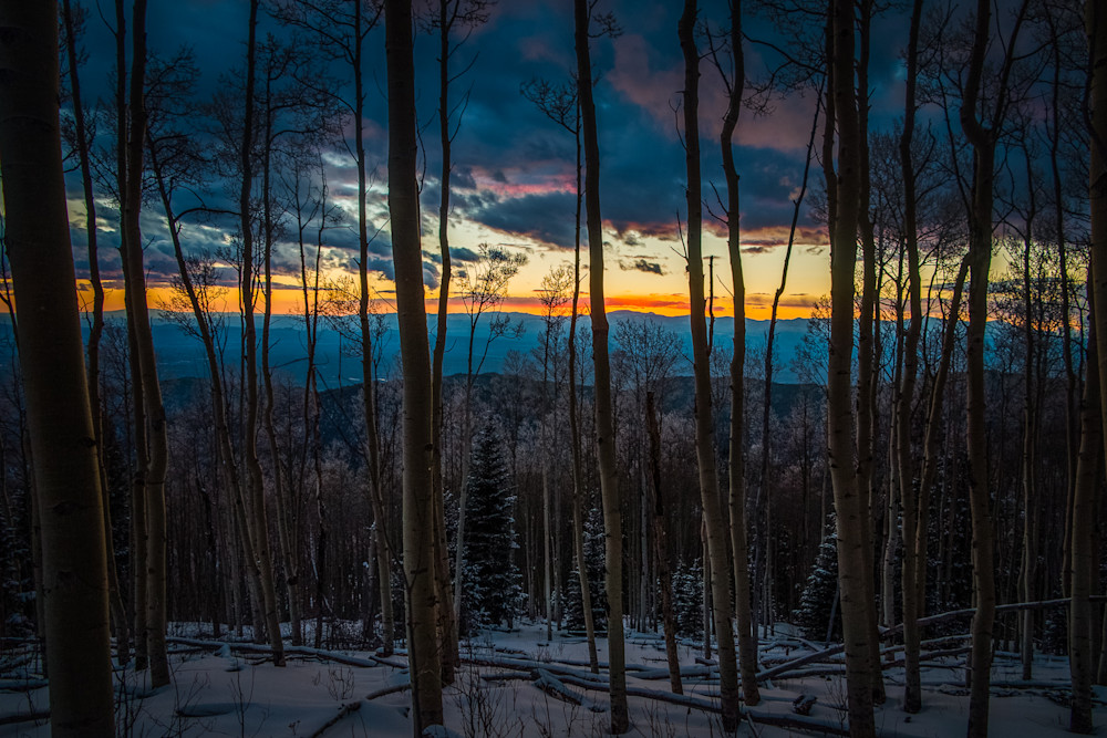 Aspens, Landscape, Photography, Sangre de Christo mountains, Santa Fe, sunset, dusk