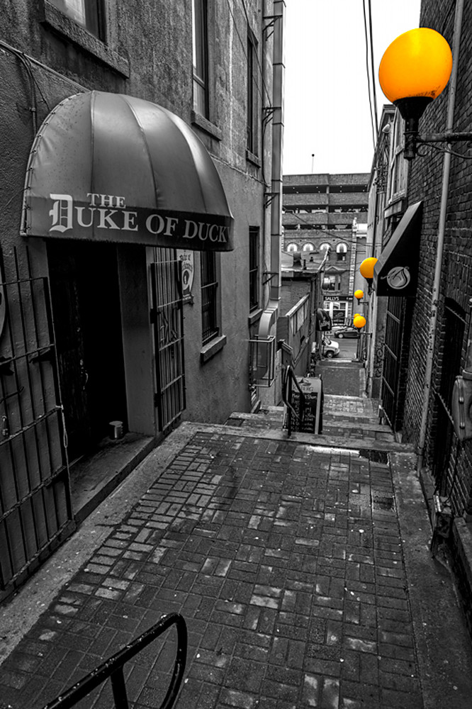 Looking Down - The Duke