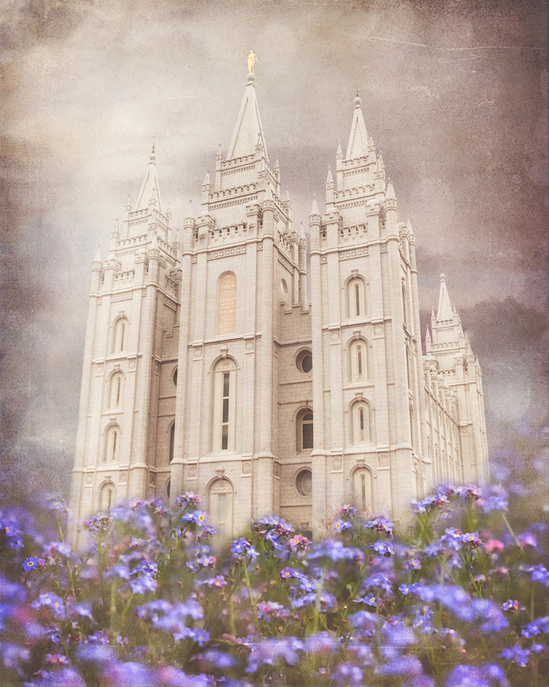 Salt Lake Temple Forget Me Not Art | Mandy Jane Williams Art