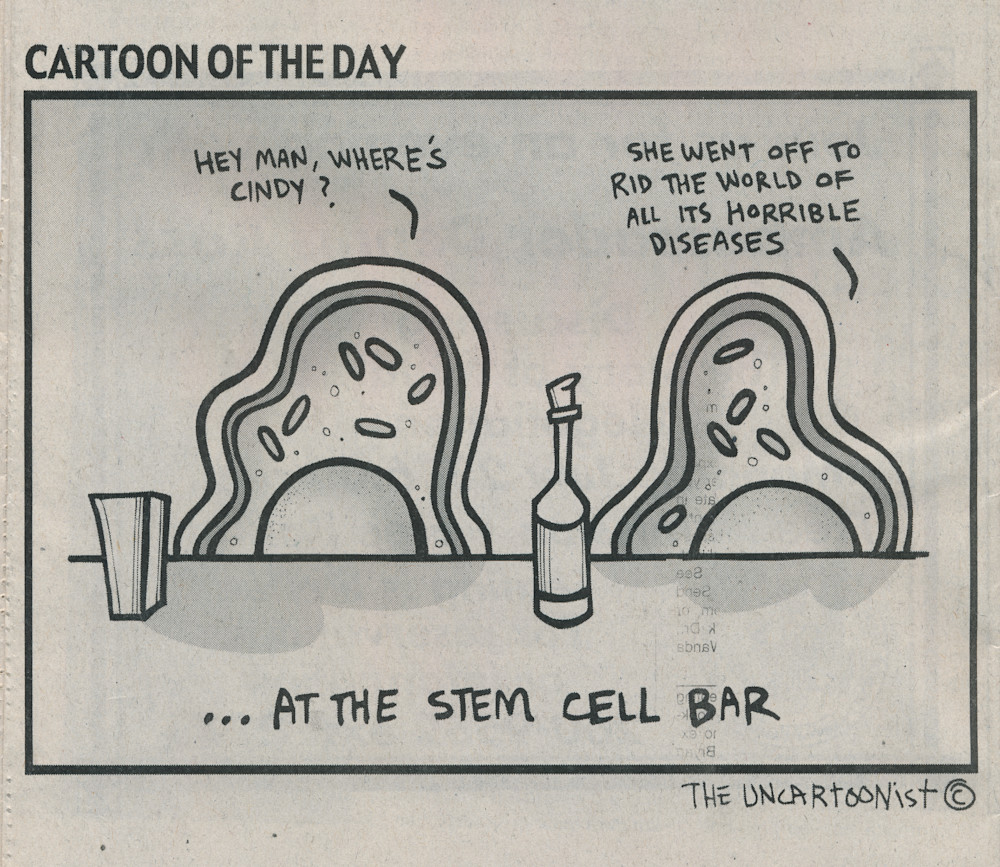 stem cell bar