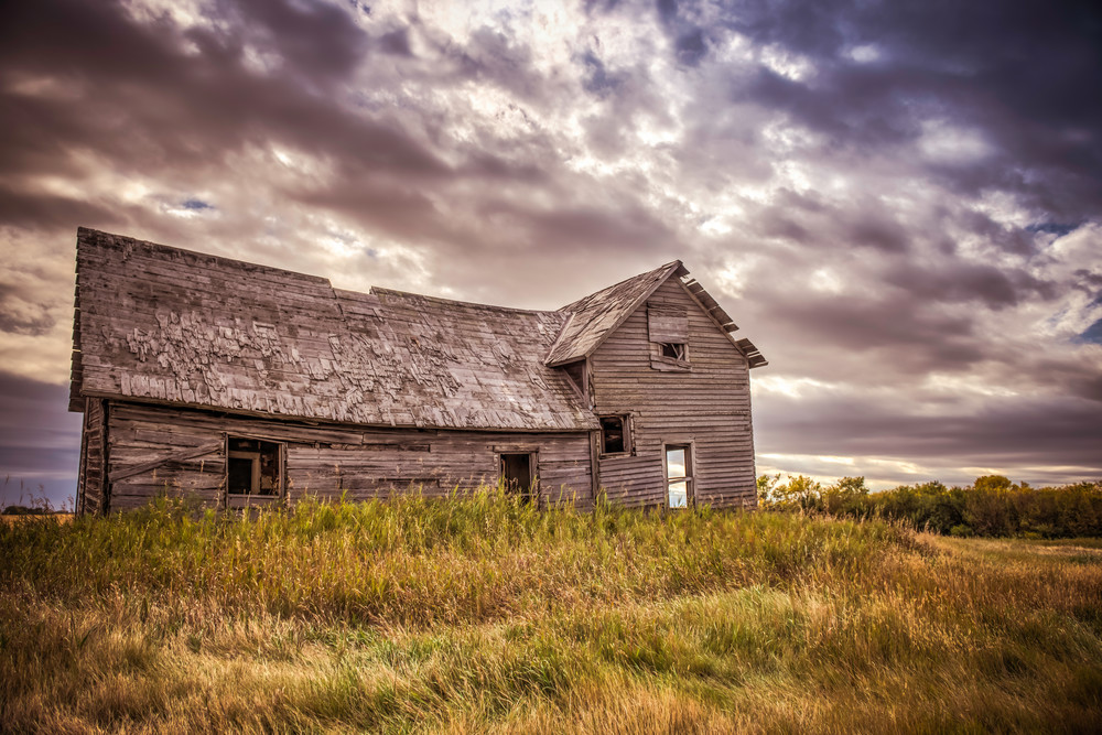 From Which I Come | Fine art photograph by Wayne Stadler