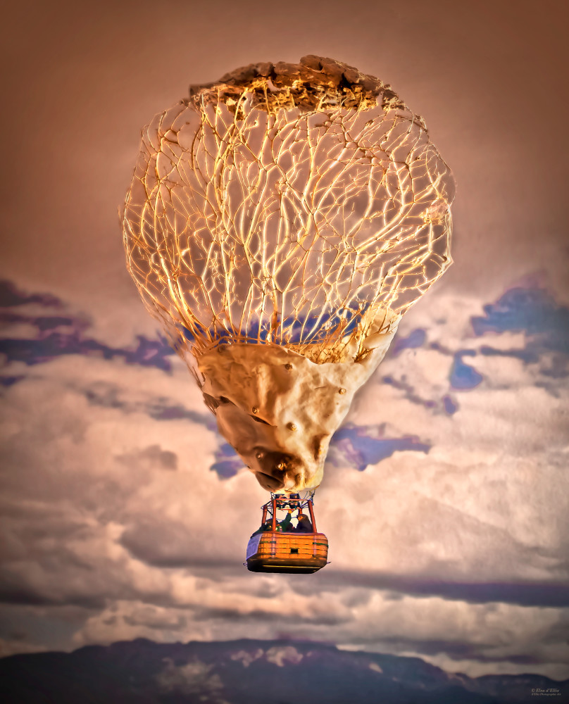 Balloon Different, d'Ellis Photographic Art photographs, Elsa