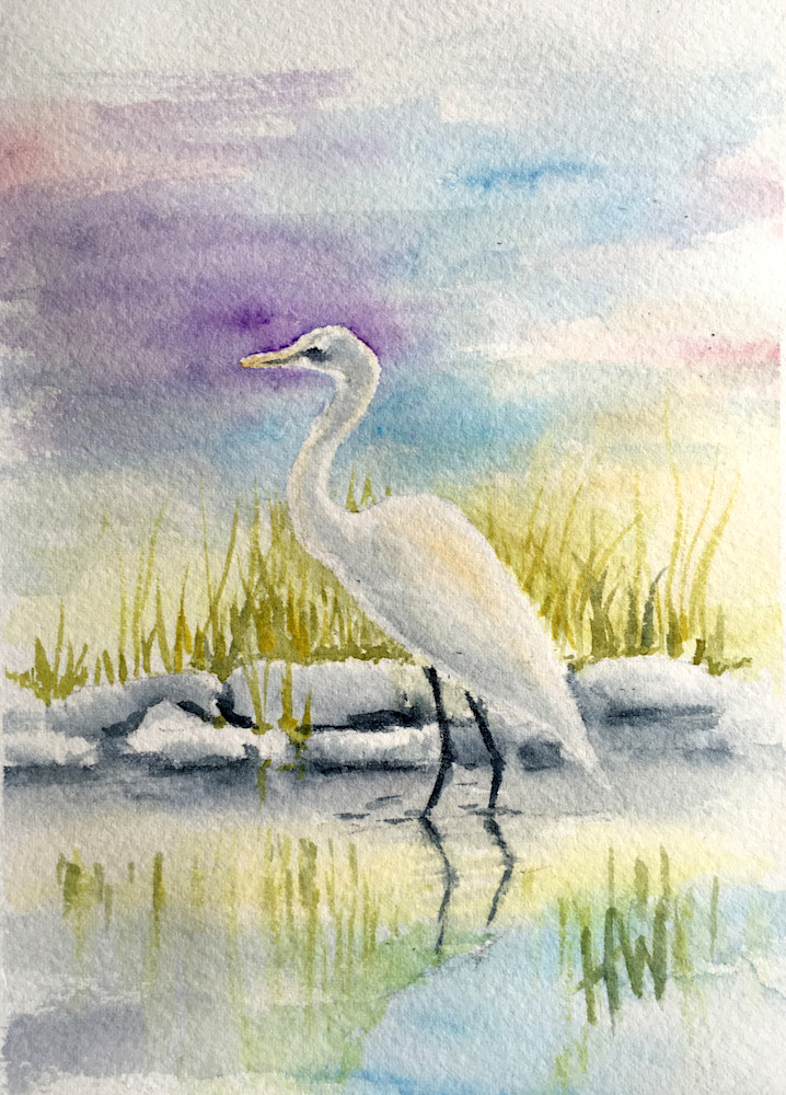Great Egret Art   Holly Whiting Art