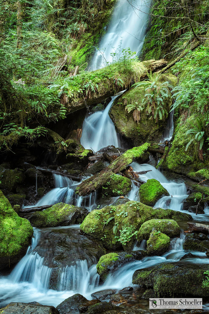 Merriman Falls fine art nature prints by Thomas Schoeller/Highly detailed waterfalls from the Olympic Peninsula