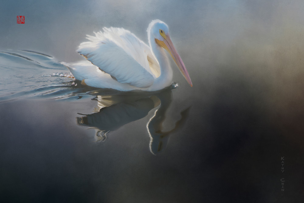Reflecting Pelly